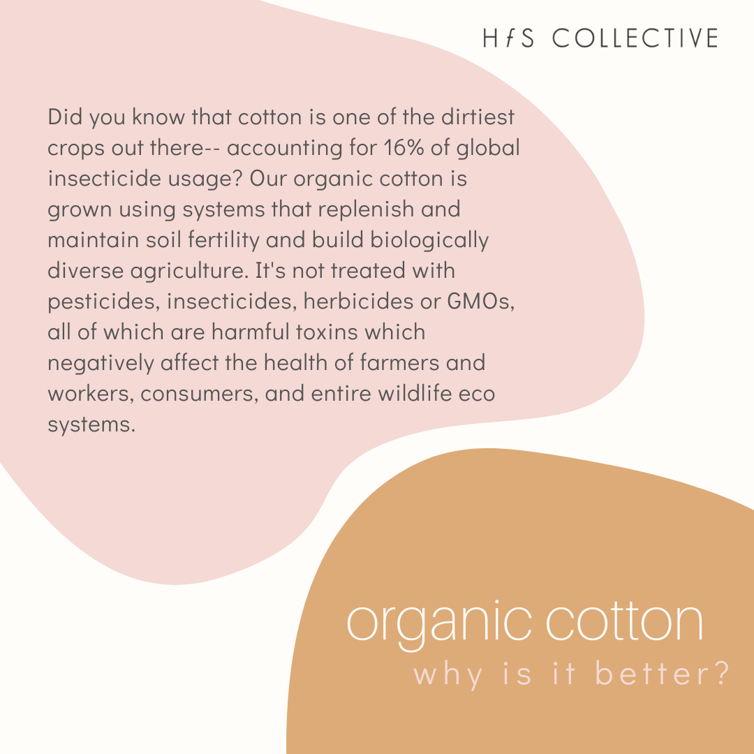 Organic Cotton: Why is it more sustainable?